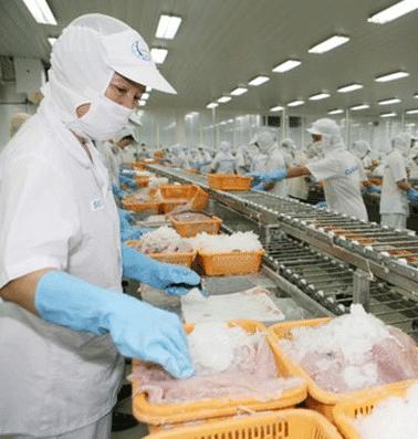 Khâu chế biến là yếu tố quyết định đến chất lượng của Bánh Mì Má Hải